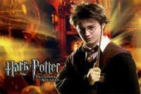 Педагог: В книге «Гарри Поттер» очень много примеров, которые не должны быть присущи детям