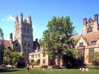 В Йельском университете предпочли христианству скотоложство